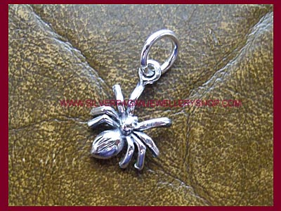 Spider Charm - Click Image to Close